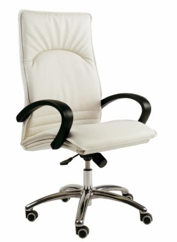 Nuevo sillón de dirección. Vanguardista, confortable y Económico